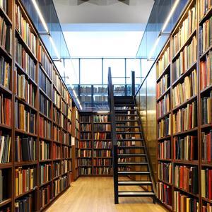 Библиотеки Холмска